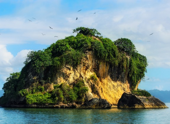 Dominican_Republic_Los_Haitises_birds_island