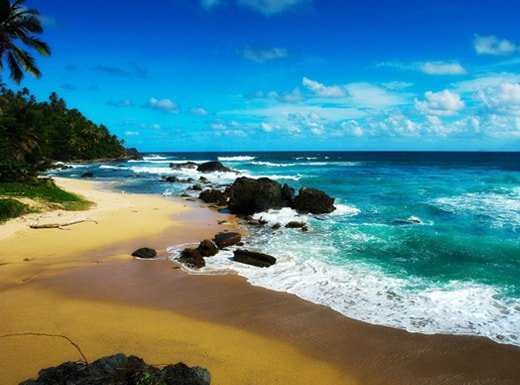 Playa Jackson