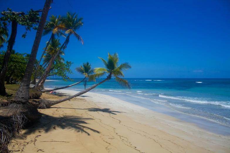 playa las terrenas samana