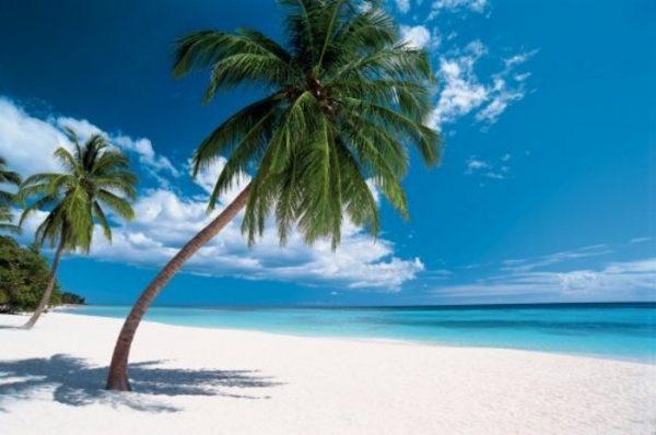 Une belle plage des Caraïbes